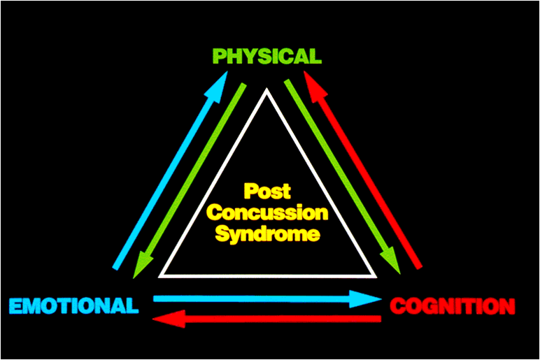 post concussion syndrome | the brain and behavior clinic, Skeleton